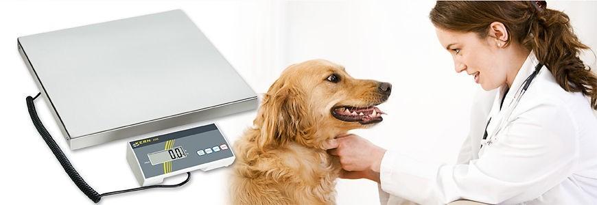 Balances vétérinaires