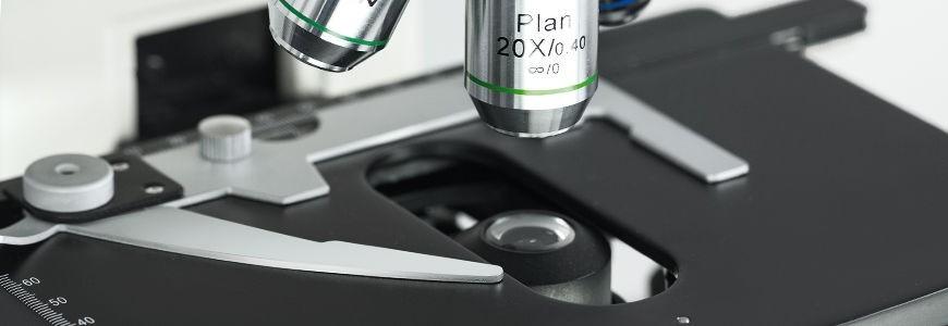 Microscopes à lumière transmise